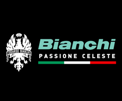 bianchimarques